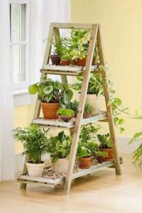 4-2-ladder