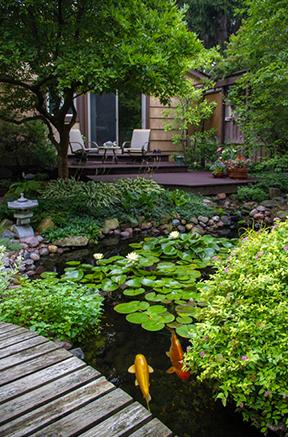 tuinliefhebbers, tuin, tuin aanleggen, huis bouwen, tuininspiratie